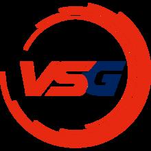 VSG (Korean Team)logo square.png