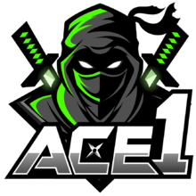 ACE 1logo square.png
