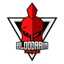 BloodRain-Gaminglogo square.png