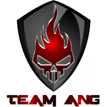 Team ANGlogo square.png