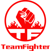 Team Fighterlogo square.png