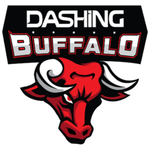 Dashing Buffalologo square.png