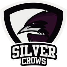 Silver Crowslogo square.png