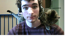 Shoulder cat.png
