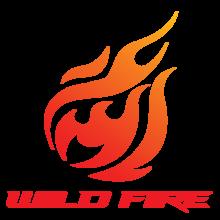 Wild Fire e-Sports Clublogo square.png