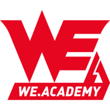 Team WE Academylogo square.png