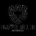 Playground Esports Publogo square.png