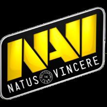 NaVi logo.png