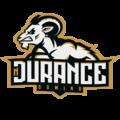 NDurance Gaminglogo square.png