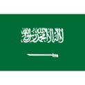 Saudi Arabia (National Team)logo square.png
