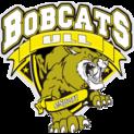 Bobcats ULLlogo square.png