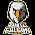 White Falcon Esportlogo square.png