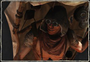 Icon Character 17.png