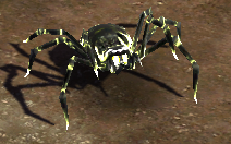 Poisonspider.png