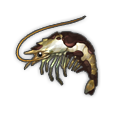 Oily Shrimp.png