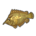 Leaf Fish.png