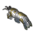 Rot Lobster.png