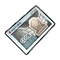 Item 20300041 Icon.png