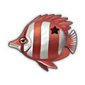 Star Bream.png