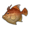 Red Thread-Sail Filefish.png