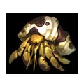 Slick Hermit Crab.png