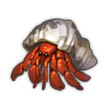 Hermit Crab.png