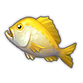 Golden Bream.png