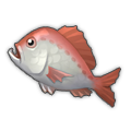 Crimson Sea Bream.png
