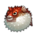 Hot Blowfish.png