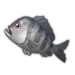 Black Porgy.png