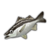 Saw-Edged Perch.png