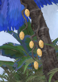 Paripo Fruit 1.png