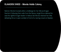 ELAADEN (HNS) - Morda Holds Colony