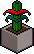 Large Plant3.png
