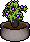 Large Plant2.png