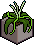 Large Plant4.png