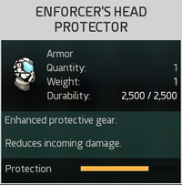 Enforcer's Head Protector