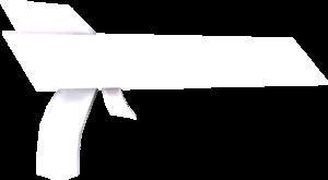 Legendary Ray Gun (Image).png