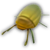 Green Scarab.png