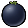 Rocket Berry.png