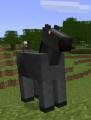 Schwarzes Pferd.png