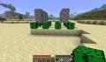 Kaktus-Farm Seite.png