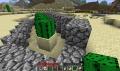 Kaktus-Farm3.png