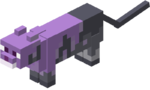 Purple cat.png