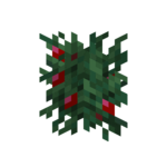 Sweet Berry Bush Age 2 JE1 BE1.png