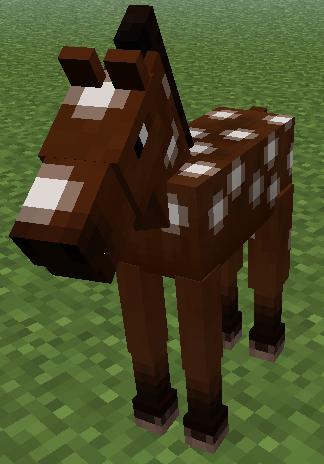 Datei:Pferd Fohlen.png