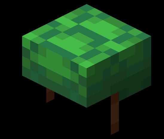 Schildkrötenpanzer Minecraft