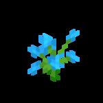 Blaue Orchidee.png
