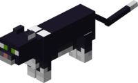 Schwarze Katze.png