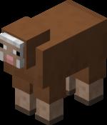 Braunes Schaf.png